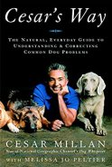 Cesar Millan - dog barking solutions