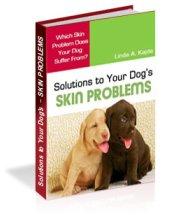 dog skin problem