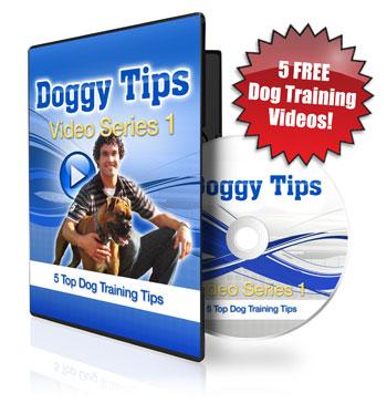 doggy dan online dog trainer