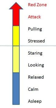 dog stress chart