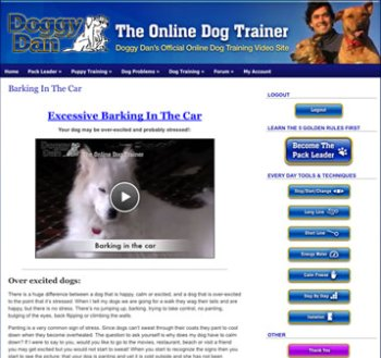 puppy training videos