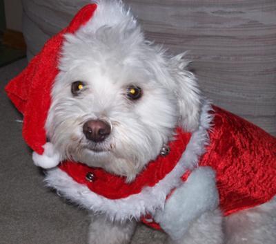 As Santa