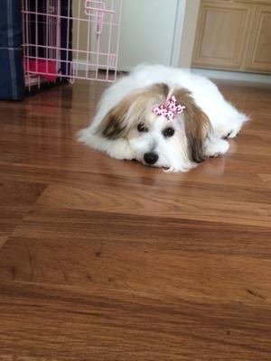 Ella is 7 months