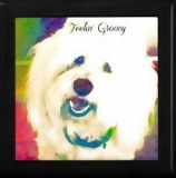 coton de tulear jewelry box