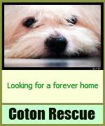 coton rescue