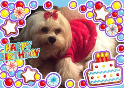 Happy 1st Birthday Dira!
