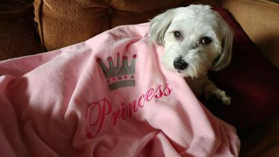 Princess Leila