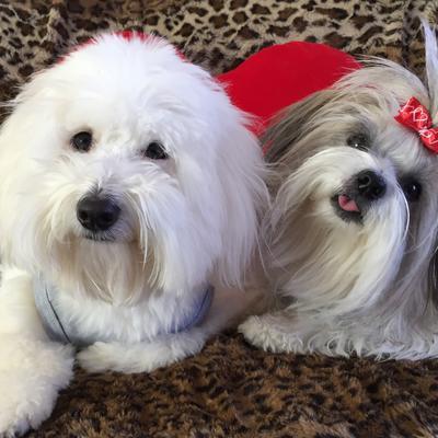 Maxwell and Tallulah