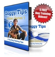 dog training video