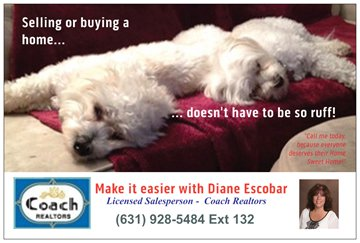 Spanky & Gleason help promote my business with great success!