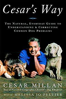 Cesar Millan - dog barking solutions