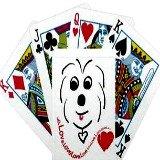 coton de tulear playing cards