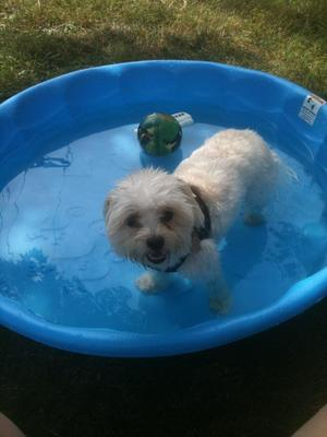 Hot summer Fun with Spanky