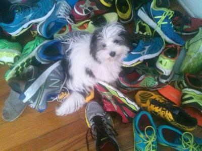 Sebastien on our running shoes